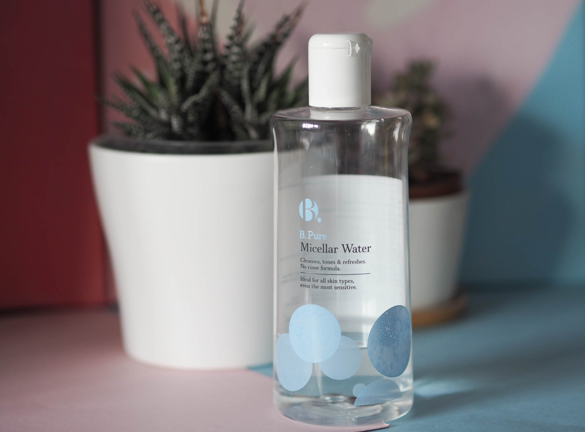 B. Pure Micellar water in front of two succulent plants in white pots (landscape orientation)