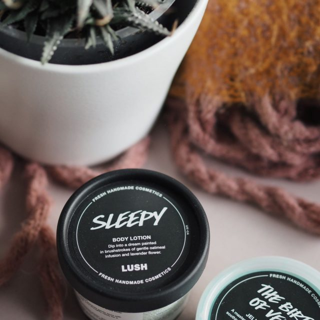Lush products in front of a potted plant