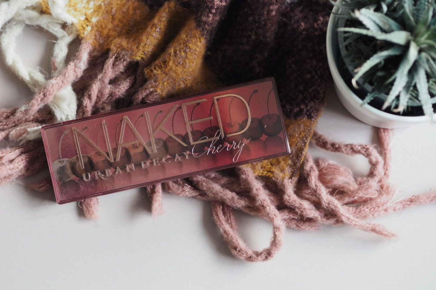 A pink eyeshadow palette upon a pink scarf next to a spiky potted plant